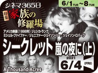シークレット嵐の夜に(上)(1998年ミステリー映画)