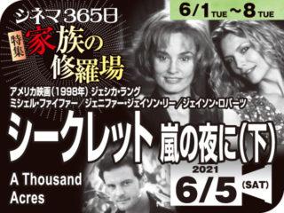 シークレット嵐の夜に(下)(1998年ミステリー映画)