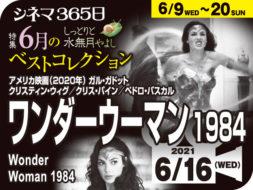 ワンダーウーマン1984(2020年 ファンタジー映画)