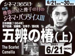 五辨の椿(上)(1964年 社会派映画)