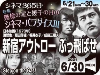 新宿アウトローぶっ飛ばせ (1970年代 アクション映画)